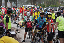 Florida Bicycle Safari 2016